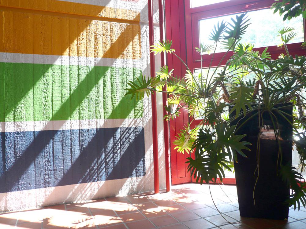RWB Essen Schule Rundgang  Bepflanzung Treppenhaus 3