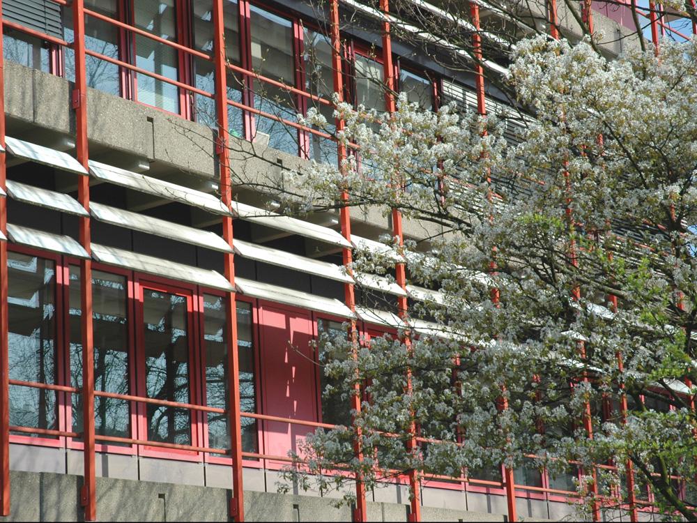 RWB Essen Schule Rundgang Gebäude außen 1