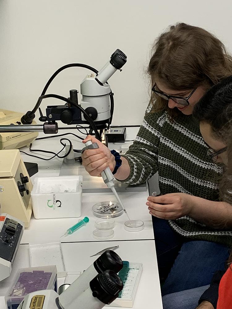 RWB Essen - Ein Tag im Labor des Uniklinikums Aachen - Pipettierung der RNA